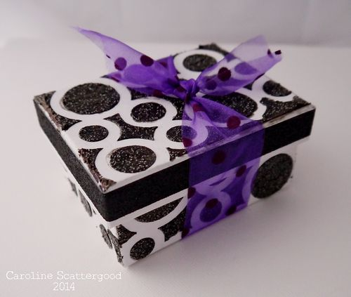 TandoDT-Black_and_Purple-Box1